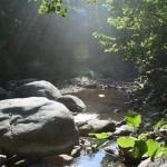 Vue de la rivière l'été avec rochers et rayon de soleil